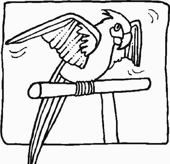 Uccello da colorare 257