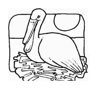 Uccello da colorare 259