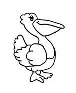 Uccello da colorare 261
