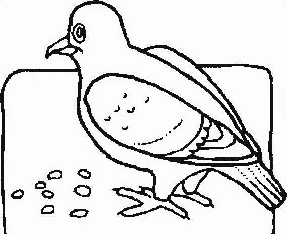 Uccello da colorare 263