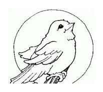 Uccello da colorare 273