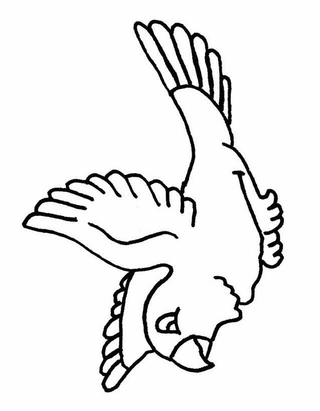 Uccello da colorare 283