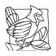 Uccello da colorare 291