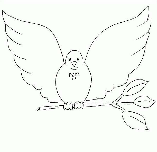 Uccello da colorare 297