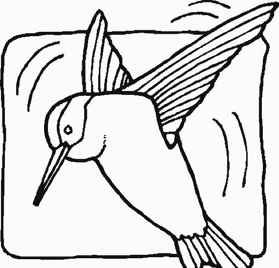 Uccello da colorare 308