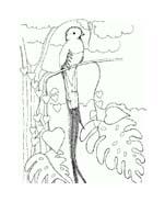 Uccello da colorare 323