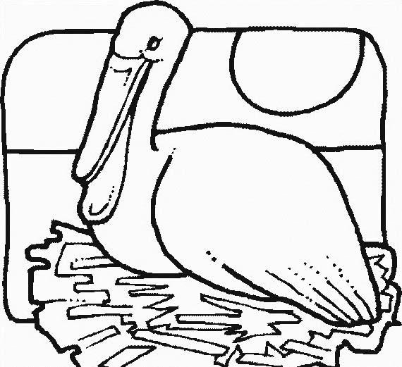 Uccello da colorare 327