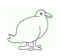 Uccello da colorare 330