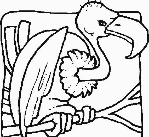 Uccello da colorare 335