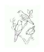 Uccello da colorare 340