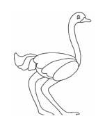 Uccello da colorare 352