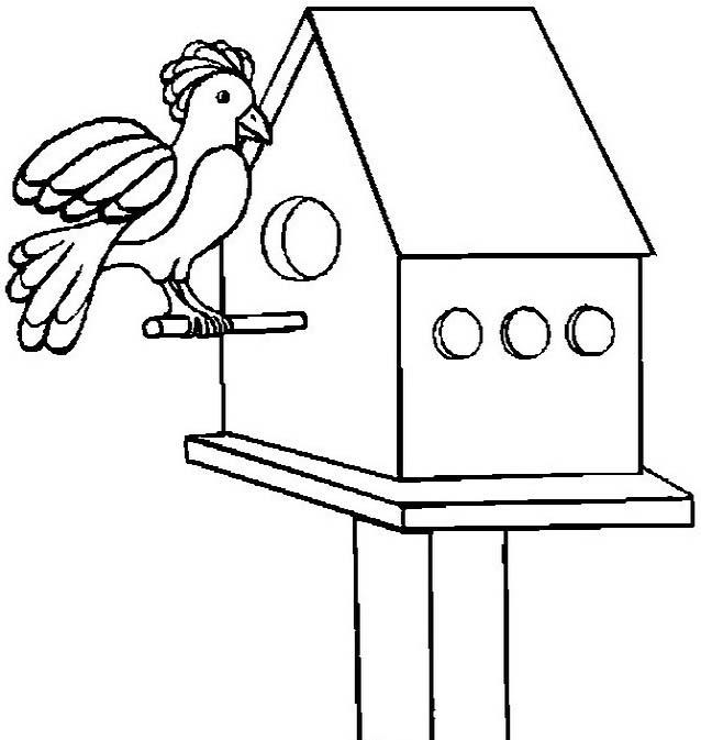 Uccello da colorare 357