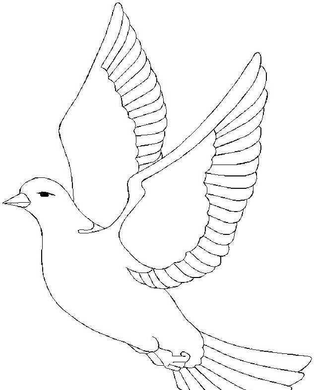 Uccello da colorare 358