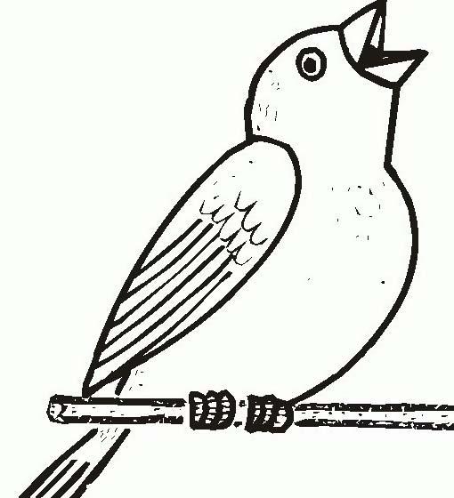 Uccello da colorare 362