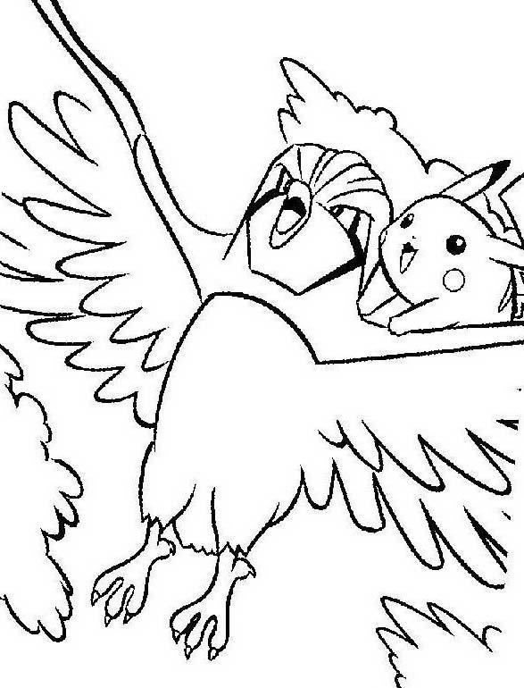 Uccello da colorare 368