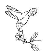 Uccello da colorare 370