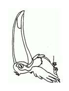 Uccello da colorare 376