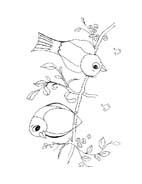 Uccello da colorare 377