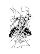 Spiderman da colorare 166