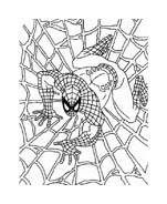 Spiderman da colorare 237