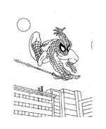 Spiderman da colorare 242