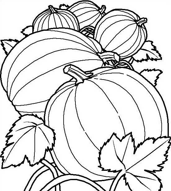 Verdura da colorare 95