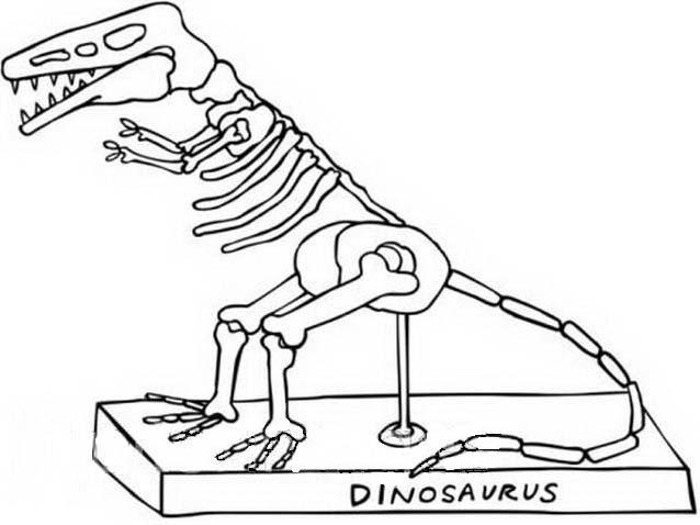 Dinosauro da colorare 340