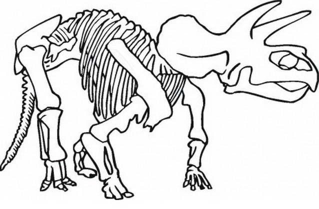 Dinosauro da colorare 343