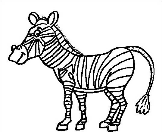 Zebra da colorare 24