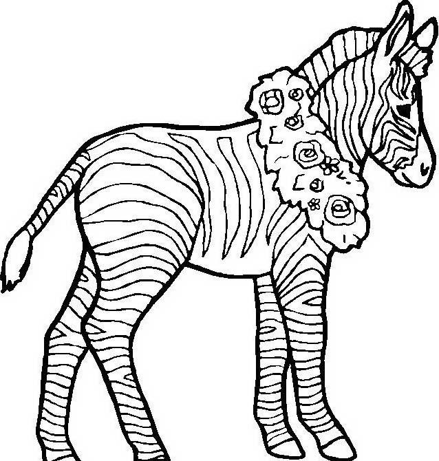 Zebra da colorare 26