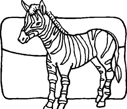 Zebra da colorare 29