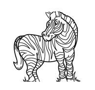 Zebra da colorare 31