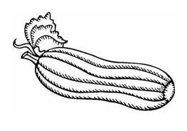 Verdura da colorare 125